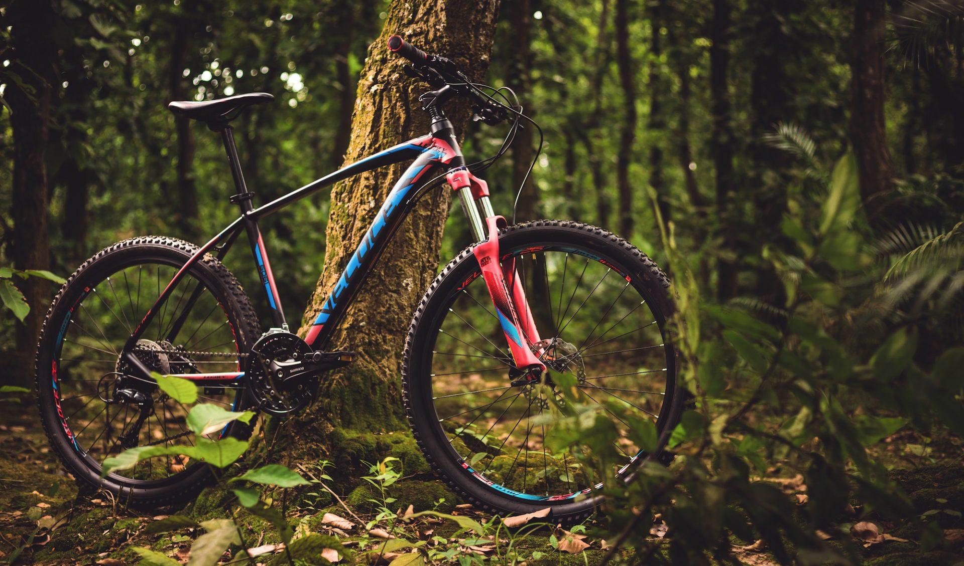 Veloce Bike